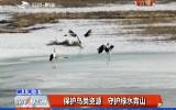 保护鸟类资源 守护绿水青山