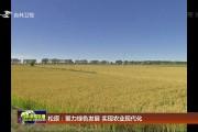 松原:聚力绿色发展 实现农业现代化