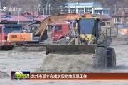 龙井市基本完成水毁耕地复垦工作