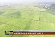加快发展现代农业 率先实现农业现代化