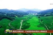 梅河口市复兴村:产业项目带动村民过上幸福生活