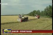白城市第一季燕麦开始收割