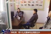 【党代表归来话落实】 林松淑:把十九大精神传达到群众中