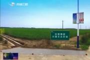 长岭:以供给侧结构性改革 推动传统农业转型升级