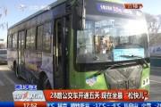 """【独家视频】28路公交车开通五天 现在坐最""""松快儿"""""""