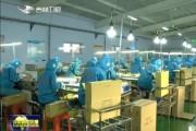 珲春出口加工区板材进口增长43%