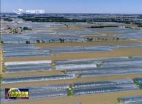 【新技术新模式助力乡村振兴】玩转农业新模式 乡村振兴辟新路