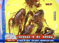 """小龙虾相关谣言一再""""重生"""" 专家来辟谣"""
