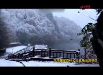Copy_1010 丛龙静 你那里下雪了吗?