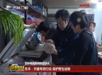 东丰:开展专项行动 保护野生动物