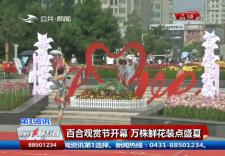 第1报道|长春公园百合观赏节开幕 万株鲜花装点盛夏