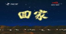回家|廖琼枝:冻水牡丹