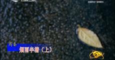 回家|周秦 煙雨半塘(上)