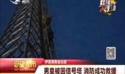 男童被困信号塔 消防成功救援