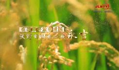 吉林省县域巡礼微视频系列|永吉沃野田畴起欢歌