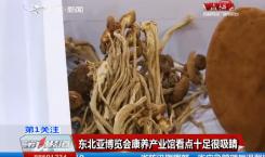 第1报道|【东北亚博览会】康养产业馆看点十足 很吸睛!