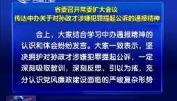 省委召开常委扩大会议 传达中办关于对孙政才涉嫌犯罪提起公诉的通报精神