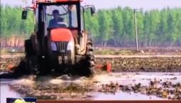 吉林:强基固农 夯实现代农业生产体系