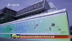 延吉龙山恐龙化石亮相北京大学化石文化周