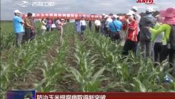 防治玉米根腐病取得新突破