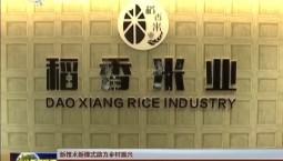 【新技术新模式助力乡村振兴】稻田综合种养 农民增收新途径