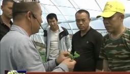 【新时代传习所】前郭县八郎镇:传习惠农科技 助力脱贫攻坚