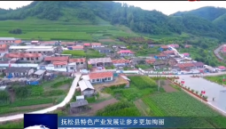 吉林报道|抚松县特色产业发展让参乡更加绚丽