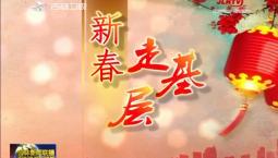 【新春走基层】温室大棚科技多