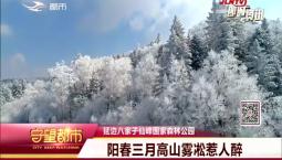 守望都市|延边仙峰国家森林公园:阳春三月 高山雾凇惹人醉