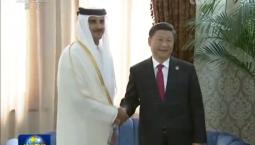 [視頻]習近平會見卡塔爾埃米爾