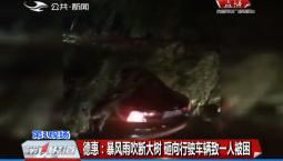 第1报道|德惠:暴风雨吹断大树 砸向行驶车辆致一人被困