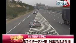 守望都市|疯狂逆行十多公里 涉事司机被刑拘