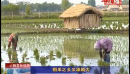 乡村四季12316|稻米之乡又添助力