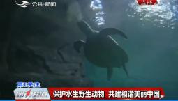 第1报道|保护水生野生动物 共建和谐美丽中国