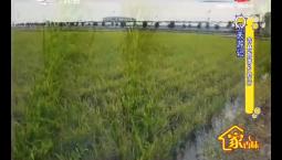 7天游记|吉林旅游乡村行_2019-09-09