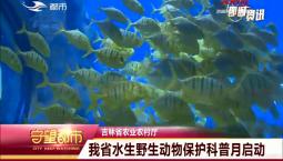 守望都市|吉林省水生野生动物保护科普月启动