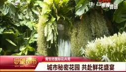 守望都市|青怡坊国际花卉周:11万枝花中瑰宝 打造花界奥斯卡