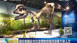 新闻早报|国庆假期延吉恐龙博物馆接待游客万余人次