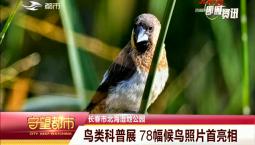 守望万博官网manbetx客户端|长春市北海湿地公园开展鸟类科普展 78幅候鸟照片首亮相