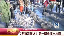 守望都市|吉林省松原市查干湖:今冬首次破冰!第一网鱼浮出水面