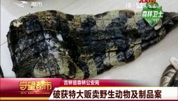 守望都市 吉林省森林公安局:破获特大贩卖野生动物及制品案