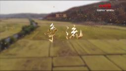 《海兰江畔稻花香》第二集——《争流》