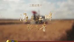 电视纪录片《海兰江畔稻花香》今晚在中央电视台纪录频道播出