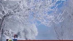 吉林:大力发展冰雪运动 做大做强冰雪经济