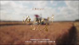亚搏 app出品三集纪录片《海兰江畔稻花香》即将登陆央视