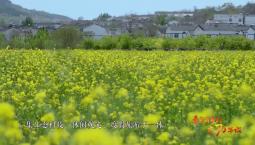 看美麗鄉村 慶70華誕丨江蘇省徐州市銅山區漢王鎮漢王村