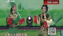 二人转总动员|肖桂芝 李树军演绎正戏《杨八姐游春》