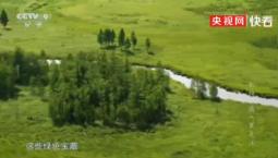 【生态文明@湿地】绿色湿地宝藏展现黑龙江迷人风情