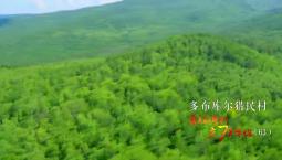 看美麗鄉村 慶70華誕丨內蒙古自治區呼倫貝爾市鄂倫春自治旗大楊樹鎮多布庫爾獵民村