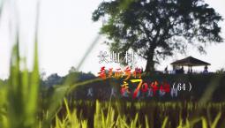 看美麗鄉村 慶70華誕丨重慶市大足區拾萬鎮長虹村